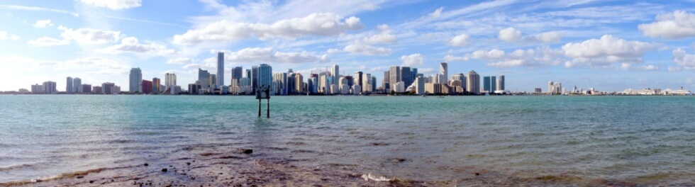The Ecology and History of Biscayne Bay