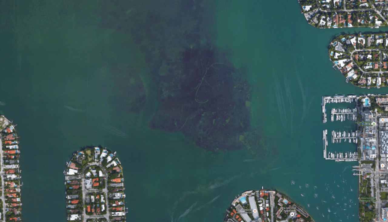 Grounding and prop scars in Biscayne Bay near South Beach